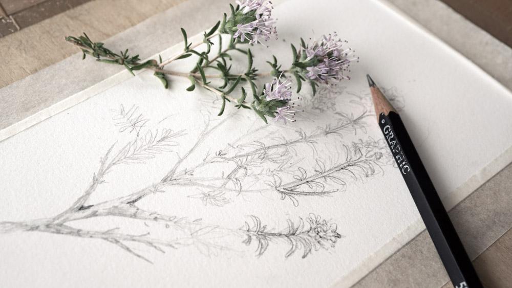 """disegno libero """"fiori di un'isola"""""""